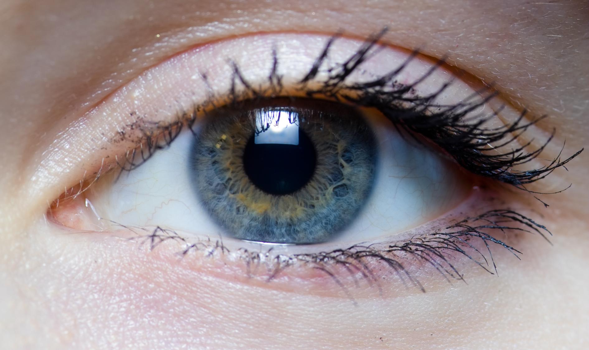 Healthy Eyes  Healthy Body Eyes